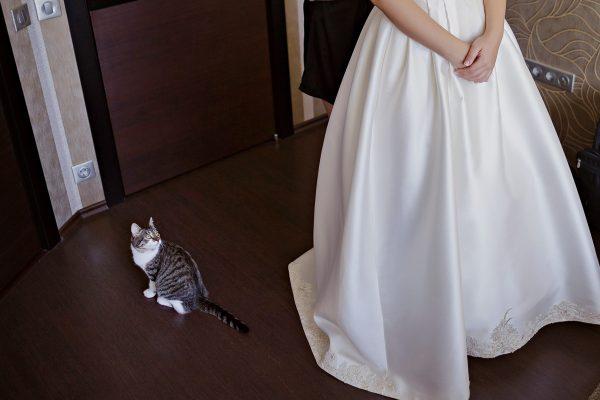 Услуги по координации свадьбы